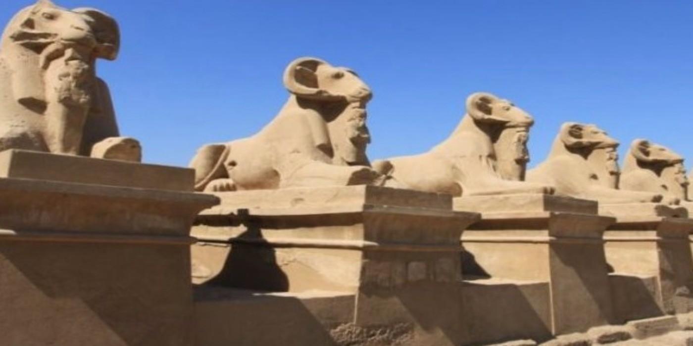 sphinx belier